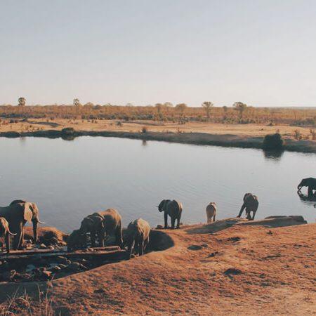 zimbabwe_banner